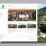 Website design for WEMS Medical Director Course